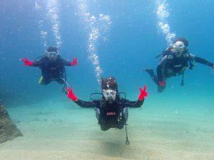 屋久島 ダイビング まる トレッキング 少人数制 女性ガイド 世界遺産 水中写真
