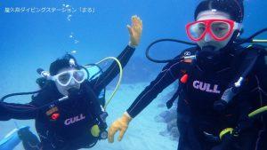 屋久島で体験ダイビング