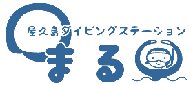 屋久島ダイビングステーション まる